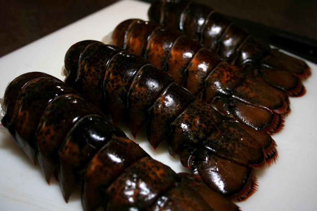 Lobster Mac | Dash of Savory