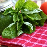 Diet Friendly Pesto