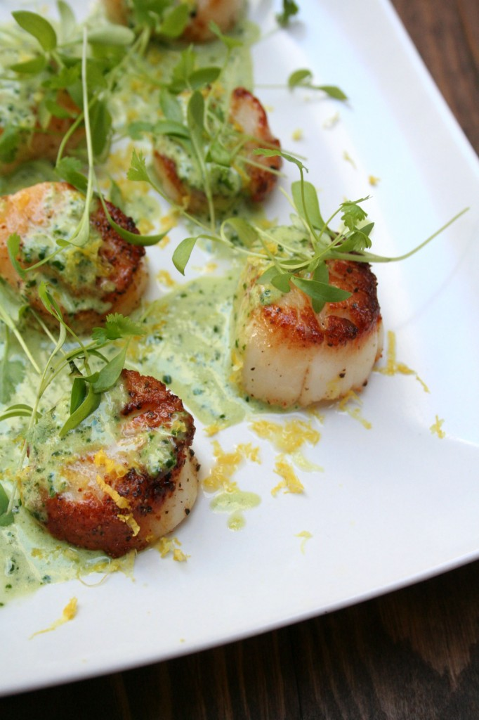 with asparagus creamy scallops and peppers creamy garlic scallops ...